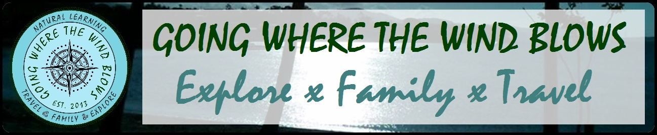 Going Where The Wind Blows - Large Family Travel Blog