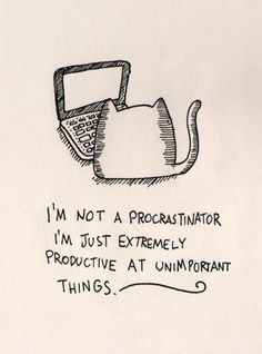 procrastination cat computer