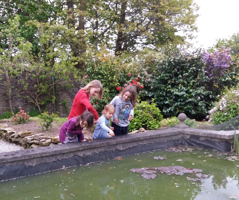 children feeding fish walled garden cornwall